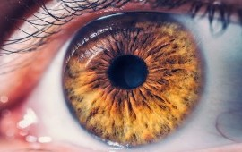 What You Need to Know About Refractive Error