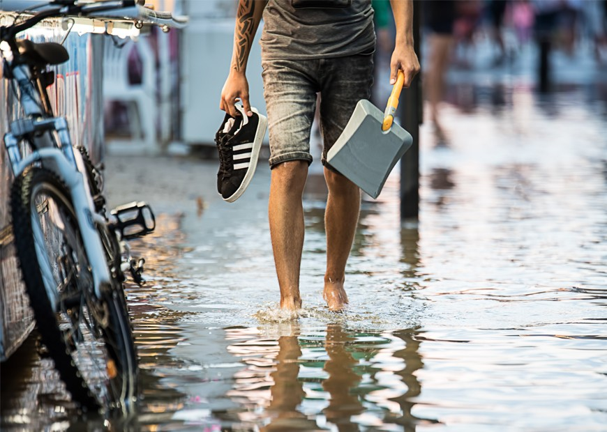 All About Leptospirosis